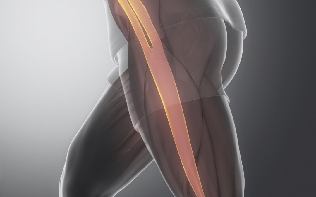 What is Fascia and How Can You Keep it Healthy?